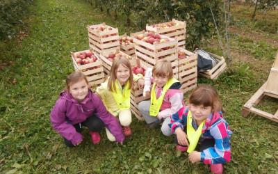Naravoslovni dan 2. razreda: jesen v sadovnjaku