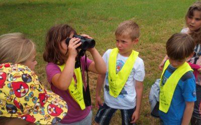 Naravoslovni dan: Iščemo sledi bobra